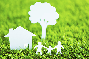 Environmental Issues and the Real Estate Professional