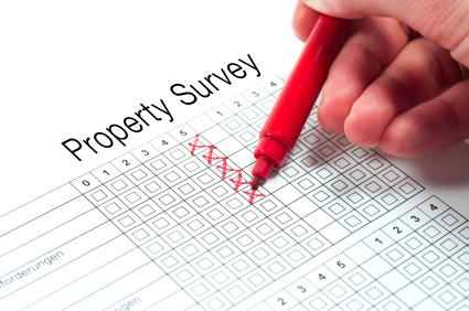 real estate property survey